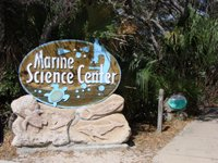 Marine Science Center,Ponce Inlet, Florida