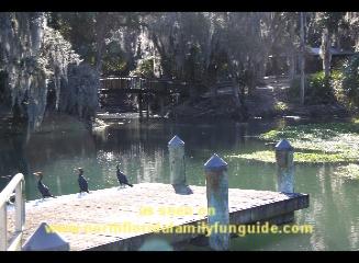 Four Townes Rotary RiverFest, Gemini Springs Park,  DeBary, Florida