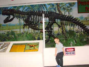 Museum of Science and History, Jacksonville