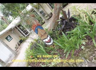Big Cat Rescue - Tampa, Florida