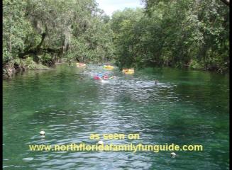 Blue Spring State Park - Orange City, Florida