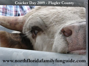 cracker day, rodeo, flagler county
