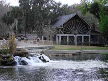 deleon springs, park, springs, swimming, florida