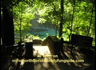 Ichetucknee Springs State Park Tubing - Fort White, Florida