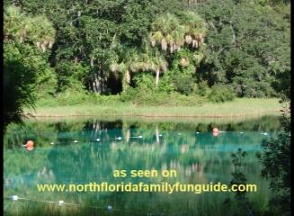 Rainbow Springs - Dunnellon, Florida