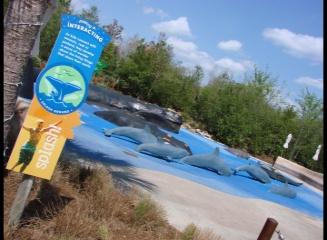 Sunsplash Park Daytona Beach Splash At The Jacksonville Zoo