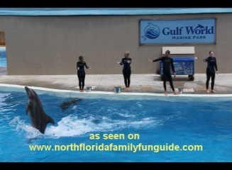 Gulf World Marine Park - Panama City, Florida