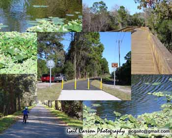 LeHigh Trail, Palm Coast, Florida