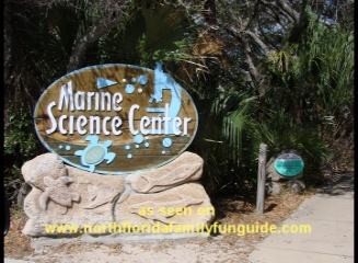 marine science center, ponce inlet, florida