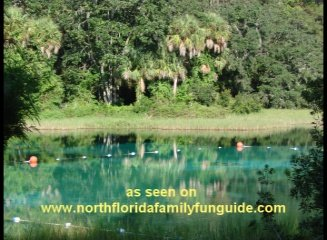 Rainbow Springs - Dunnellon, Florida
